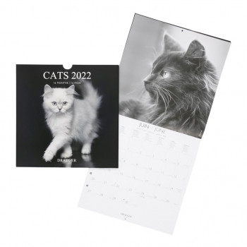 Calendrier Mural Draeger Chat