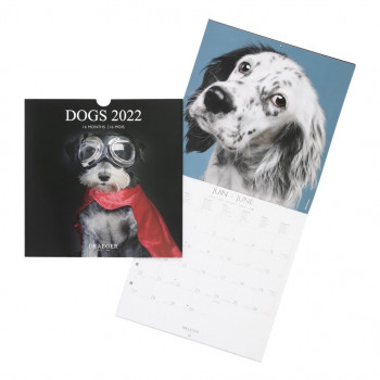 Calendrier Mural Draeger Chien